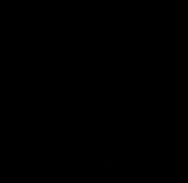 stammeslillie